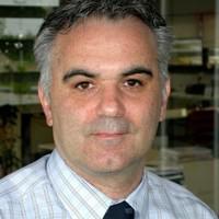 Luca FRANZAN